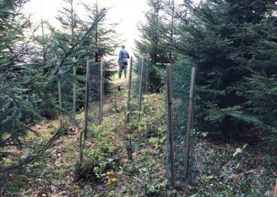 Kultürchen 18: Projekt Weihnachtsbaum